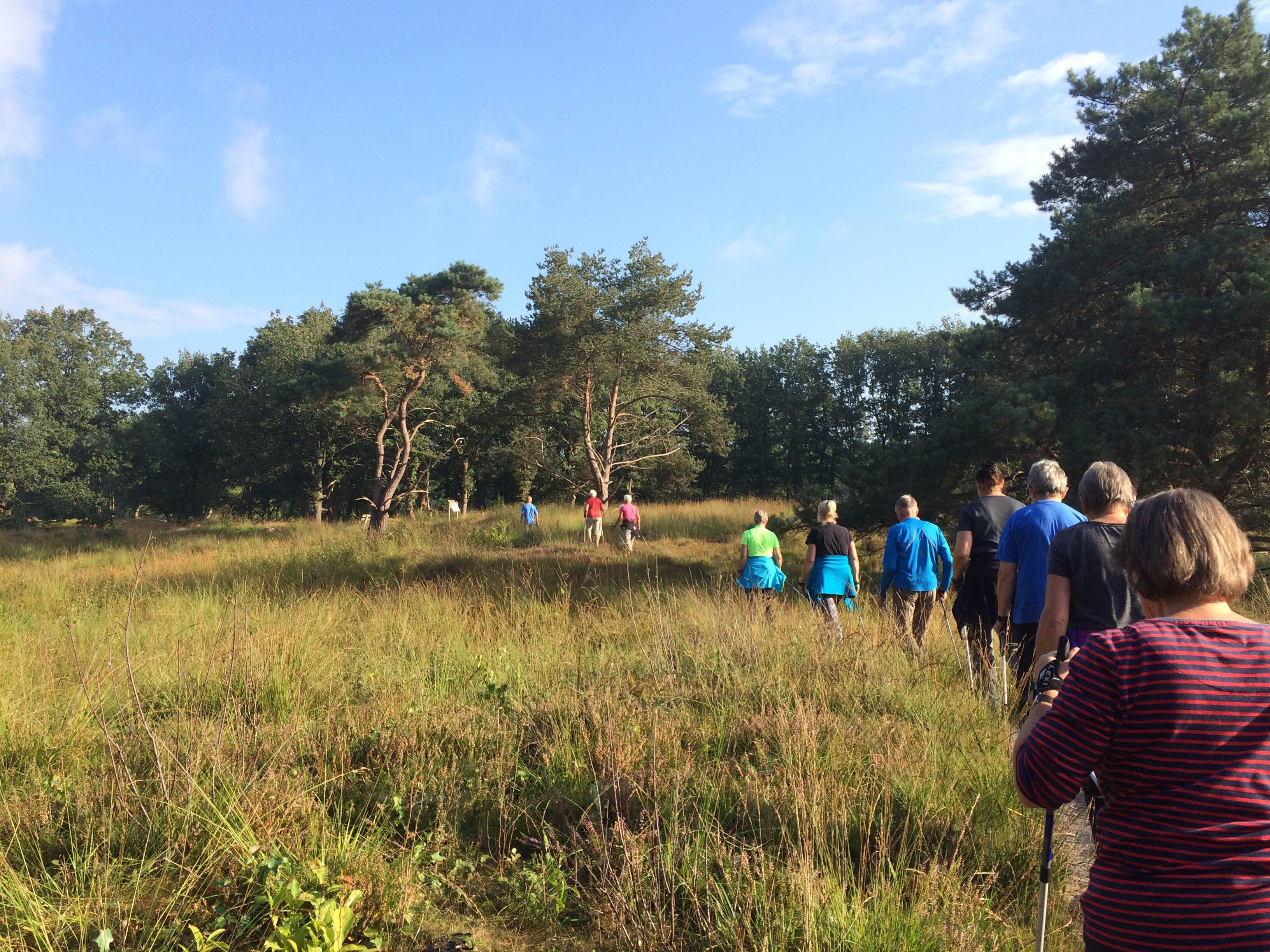 Nordic Walking Gorredijk